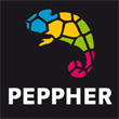PEPPHER Project